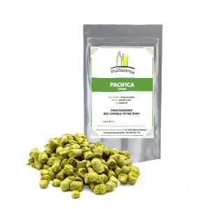 Chmiel PACIFICA NZ - 2018r - 3,1% - 50g